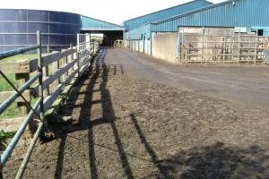 Farm_yard